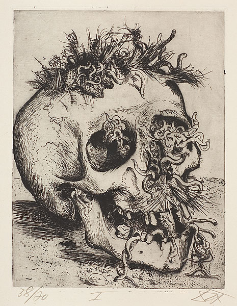 25-Skull465